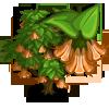 Giant Angel Trumpet Tree-icon