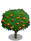Orange6-icon