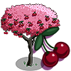 Hawaiian Cherry Tree-icon