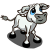 Tuscan Calf-icon