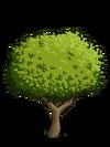 Apple Tree1-icon