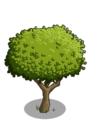 Apple Tree1-icon.png