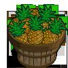 Hilo Pineapple Bushel-icon