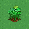 Perfect Green Rose-icon
