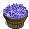 Spring Squill Bushel-icon