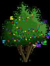 Avocado Tree5-icon