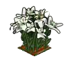 Perfect Lilies-icon