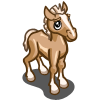 Welsh Pony Foal-icon