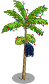 Acai Tree6-icon