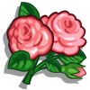 English Rose-icon