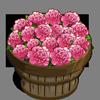 Ballet Queen Flower Bushel-icon
