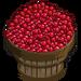 Cranberry Bushel-icon