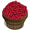 Cranberries Bushel-icon