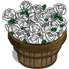 White Rose Bushel-icon