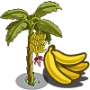 Banana Tree-icon.png