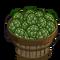 Artichoke Bushel-icon