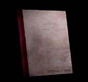 Yoshino Takigawa's diary