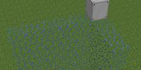 MFFS Projector Module Wall