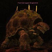 Tartaruga-Gigante