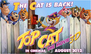 Movies top cat poster