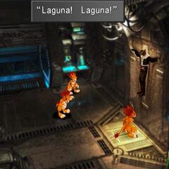 Moomba mistaking Squall for Laguna.