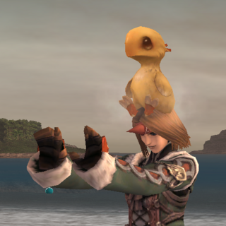 Summoned Chocobo Chick emote.