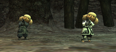 File:Domina Belle Shantotto final battle FFXI.png
