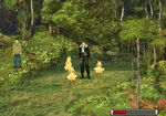 FF8ChocoboForest