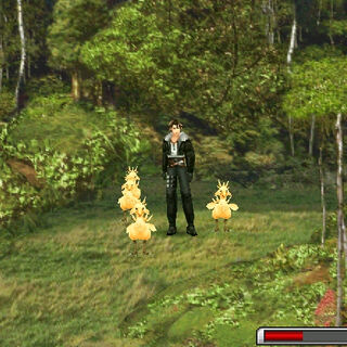 Chicobos in a Chocobo Forest.