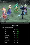FFIVDS Edge Level Up Pose