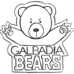 Local ice hockey team's logo.