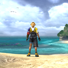 Tidus at the beach