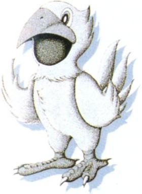 chocobo suit final fantasy wiki fandom powered by wikia