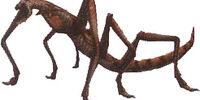 Hug Bug