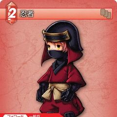 Ninja trading card.