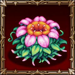 Floraxion