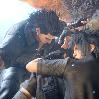 Gladiolus protects the party.