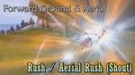 DFF2015 Rush & Aerial Rush (Shout)