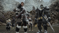 FFXIV Warriors Of Darkness In Game.png
