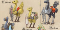 Chocobo (Final Fantasy XI)