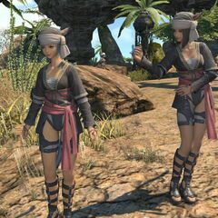 Native Miqo'te outfits.