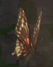 LRFFXIII Twilight Butterfly