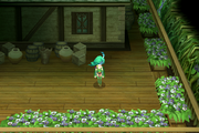 Sylph home entrance ios