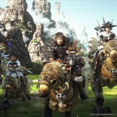 Chocobo in <i>A Realm Reborn</i> opening FMV.