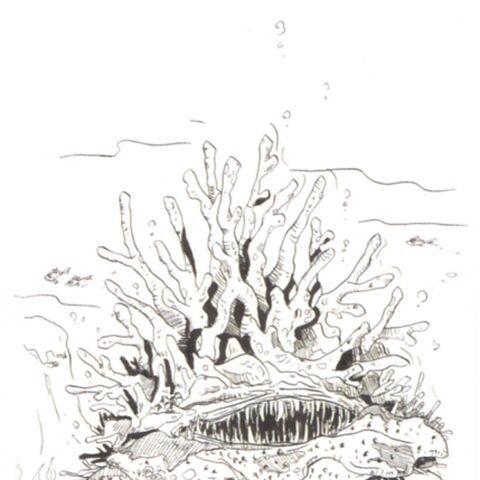 Concept artwork of the Remora.