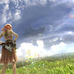 Inner sky environment.