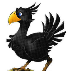 Black Chocobo.