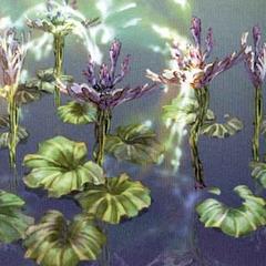 Artwork of the river's vegetation.