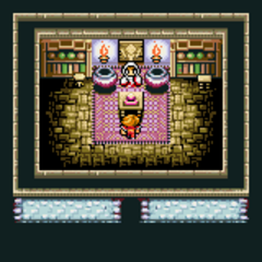 Cornelia's White Magic shop (GBA).