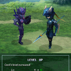 Level up pose for Dark Knight Cecil (DS).
